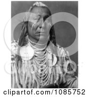 Apsaroke Crow Indian Man Called Red Wing Free Historical Stock Photography