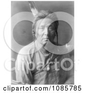 Apsaroke Indian Man Named Flathead Woman Free Historical Stock Photography