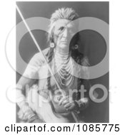 Apsaroke Indian Man Named Wolf Free Historical Stock Photography