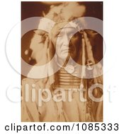 Apsaroke Native American Man Young Hairy Wolf Free Historical Stock Photography