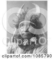Apsaroke Native Man By The Name Of Bull Chief Free Historical Stock Photography