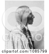 Cheyenne Native American Man By The Name Of Bear Black Free Historical Stock Photography