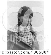 Cheyenne Native Woman Wearing Braids Free Historical Stock Photography