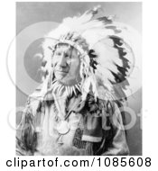 Chief American Horse Sioux Indian Free Historical Stock Photography