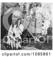 Chief Louison Free Historical Stock Photography