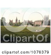 Cows Grasing At Christ Church College And Merton College Oxford Oxfordshire England Royalty Free Stock Photography