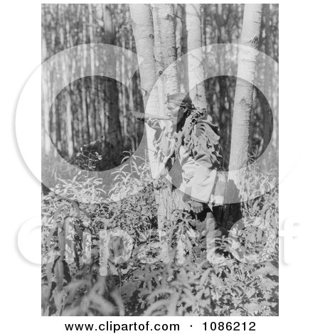 Cree Man Blowing a Horn - Free Historical Stock Photography by JVPD