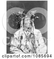Crow Indian Chief Free Historical Stock Photography