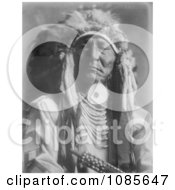 Crow Indian Man Bear Cut Ear Free Historical Stock Photography
