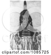 Crow Indian Man Called Chief Pretty Eagle Free Historical Stock Photography