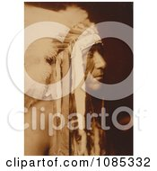 Crow Indian Man Pretty Paint Free Historical Stock Photography