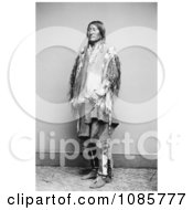 Crow Native American Chief Free Historical Stock Photography
