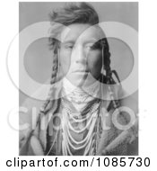 Crow Native American Man Bird On High Land Free Historical Stock Photography