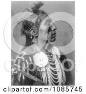 Crow Native American Man Called Medicine Crow Free Historical Stock Photography