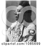 Crow Native American Man Called Plenty Coups Free Historical Stock Photography