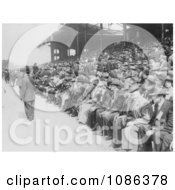 Crowd Of Baseball Fans In The Stadium On Chicago Day At White Free Historical Baseball Stock Photography by JVPD