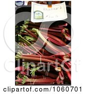 Fresh Organic Rhubarb For Sale At A Farmers Market Royalty Free Stock Photo by Kenny G Adams