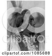 Hidatsa Native American Man Called Rabbit Head Free Historical Stock Photography