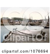 Historical Dog At The Padstow Quay Cornwall England United Kingdom Royalty Free Stock Photography by JVPD