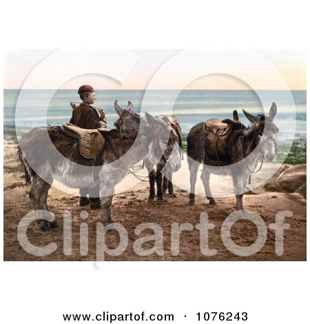 Historical Little Boy by Saddled Donkeys, Waiting for a Job and Standing on a Beach in England - Royalty Free Stock Photography  by JVPD