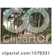 Historical People Sitting On Benches And Strolling Down The Tree Lined Invalids Walk In Bournemouth Dorset England UK Royalty Free Stock Photography