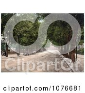 Historical Tree Lined Promenade Near The QueenS Hotel In Cheltenham Gloucestershire England Royalty Free Stock Photography by JVPD