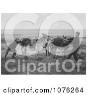 Historical Two Boys Trying To Get A Stubborn Donkey To Move On A Beach England Royalty Free Stock Photography