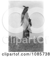 Hoop On The Forehead An Apsaroke Indian Free Historical Stock Photography