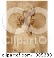 Judith A Mohave Woman Free Historical Stock Photography