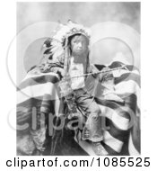 Lakota Indian Joseph Bird Head Free Historical Stock Photography