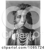 Lies Sideway A Crow Native American Free Historical Stock Photography