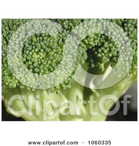 Macro Photo Of Broccoli Head With Florets by Kenny G Adams