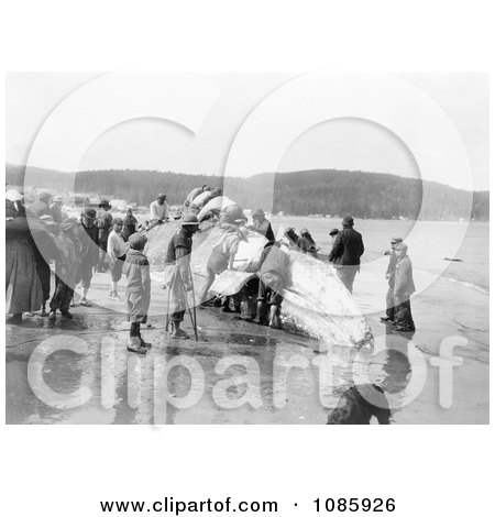 Makah Whalers - Free Historical Stock Photography by JVPD