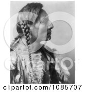 Mandan Native American Man With Braids Spotted Bull Free Historical Stock Photography