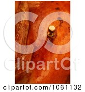 Meat Thermometer Indicating A Turkey Is Thoroughly Cooked Royalty Free Thanksgiving Stock Photo by Kenny G Adams