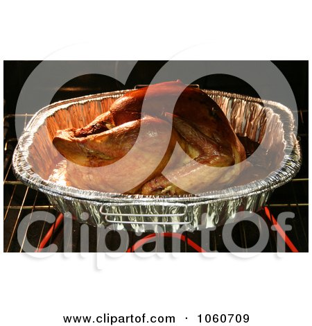 Organic Turkey Roasting In a Oven - Royalty Free Thanksgiving Stock Photo by Kenny G Adams
