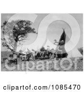 Pack Animals And People Near A Tipi Free Historical Stock Photography