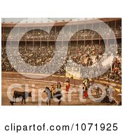 Photochrom Of A Bullfight In Barcelona Royalty Free Historical Stock Photo by JVPD