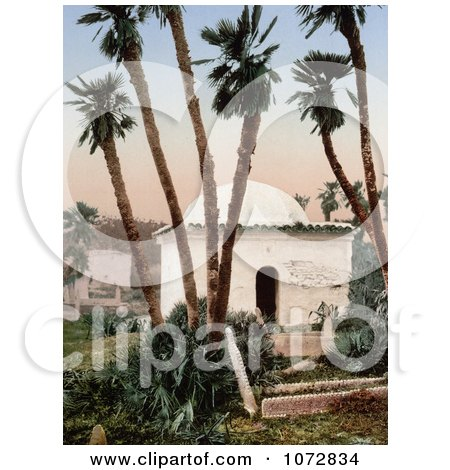 Photochrom of a Chapel Under Palm Trees at a Cemetery, Algeria - Royalty Free Historical Stock Photography by JVPD