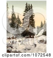 Photochrom Of A Horse Drawn Sleigh In Snow Switzerland Royalty Free Historical Stock Photography