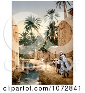 Photochrom Of A Man Mule And Boy In Biskra Algeria Royalty Free Historical Stock Photography by JVPD