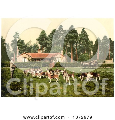 Photochrom of a Man Surrounded by Hounds - Royalty Free Historical Stock Photography by JVPD