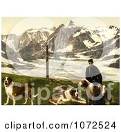 Photochrom Of A Man With St Bernard Dogs Royalty Free Historical Stock Photography by JVPD