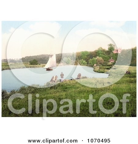 Photochrom of a Sailboat on the River Yare, a sailboat in the background, Bramerton, South Norfolk, England - Royalty Free Historical Stock Photography by JVPD