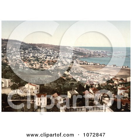 Photochrom of Algiers, Algeria - Royalty Free Historical Stock Photography by JVPD