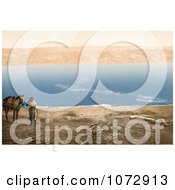 Photochrom Of An Arabian Man And Horse Near The Dead Sea Royalty Free Historical Stock Photography by JVPD