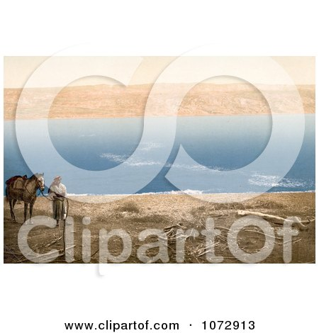 Photochrom of an Arabian Man and Horse Near the Dead Sea - Royalty Free Historical Stock Photography by JVPD