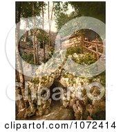 Photochrom Of Glacier Garden In Switzerland Royalty Free Historical Stock Photography