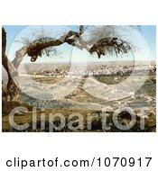 Photochrom Of Jerusalem From Mount Scopus Royalty Free Historical Stock Photo