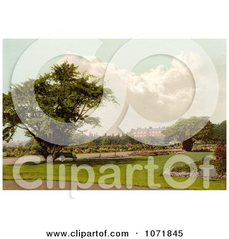 Photochrom of Park at Hampton Court Palace, London, England - Royalty Free Historical Stock Photo by JVPD